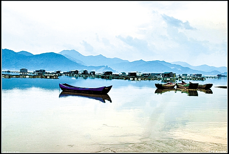 西沪港是象山半岛滩涂面积最大的内港,驱车在象山港大桥上沿着西沪
